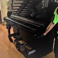 Piano Removalists Melbourne (@piano-mover) Avatar