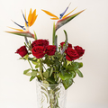 Provide Flower Services in the UK (@flowersservices) Avatar