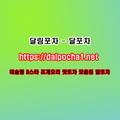 평택오피 달포차 dalpocha1、net (@ckhaleel) Avatar