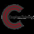 Caspian Painting Co Inc (@caspianpainting) Avatar