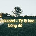 tỷ lệ kèo bóng đá - tylekeobd (@tylekeobd) Avatar