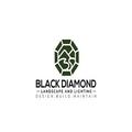 Black diamond landscape and lighting (@blackdiamondlandscapeut) Avatar