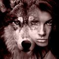 Alpha Wolf Photography (@alphawolf8) Avatar