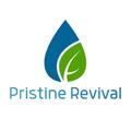 Pristine Revival (@pristinerevival) Avatar