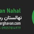 nahalargha (@nahalarghavan) Avatar