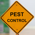 Regal Pest Control Melbourne (@regalpestmel) Avatar