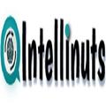 Intellinuts (@intellinuts) Avatar