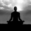 William Bell (@meditation-workshop-canada) Avatar