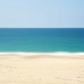Beach  (@beachtoken) Avatar