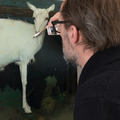 Han Boersma (@schilderijrestaurator) Avatar