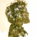 Rodrigo Gianesi (@rodrigogianesi) Avatar