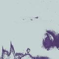 Paul Erikson (@paulerikson) Avatar