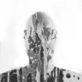 Ty Paulhus (@ttyy) Avatar