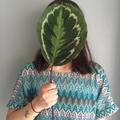 Lucia Molina Pflaum (@luciamolina) Avatar
