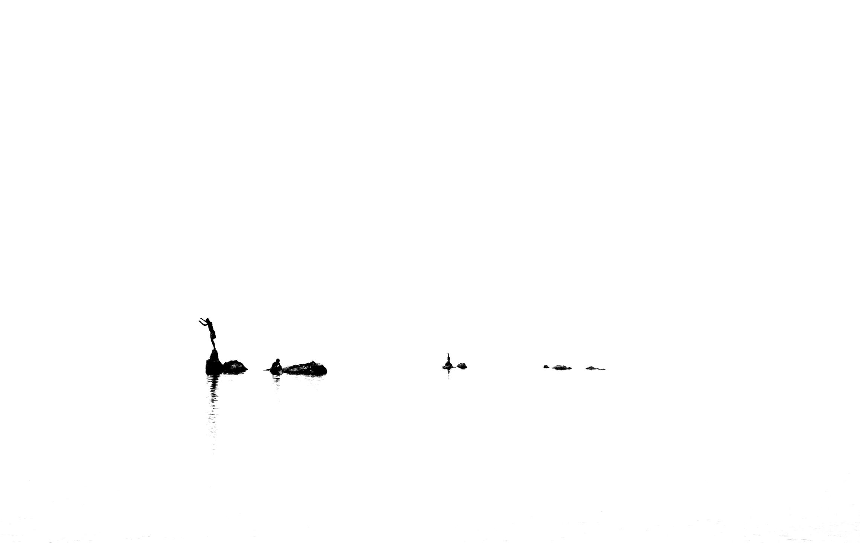 Nuno Lobito (@nunolobito) Cover Image