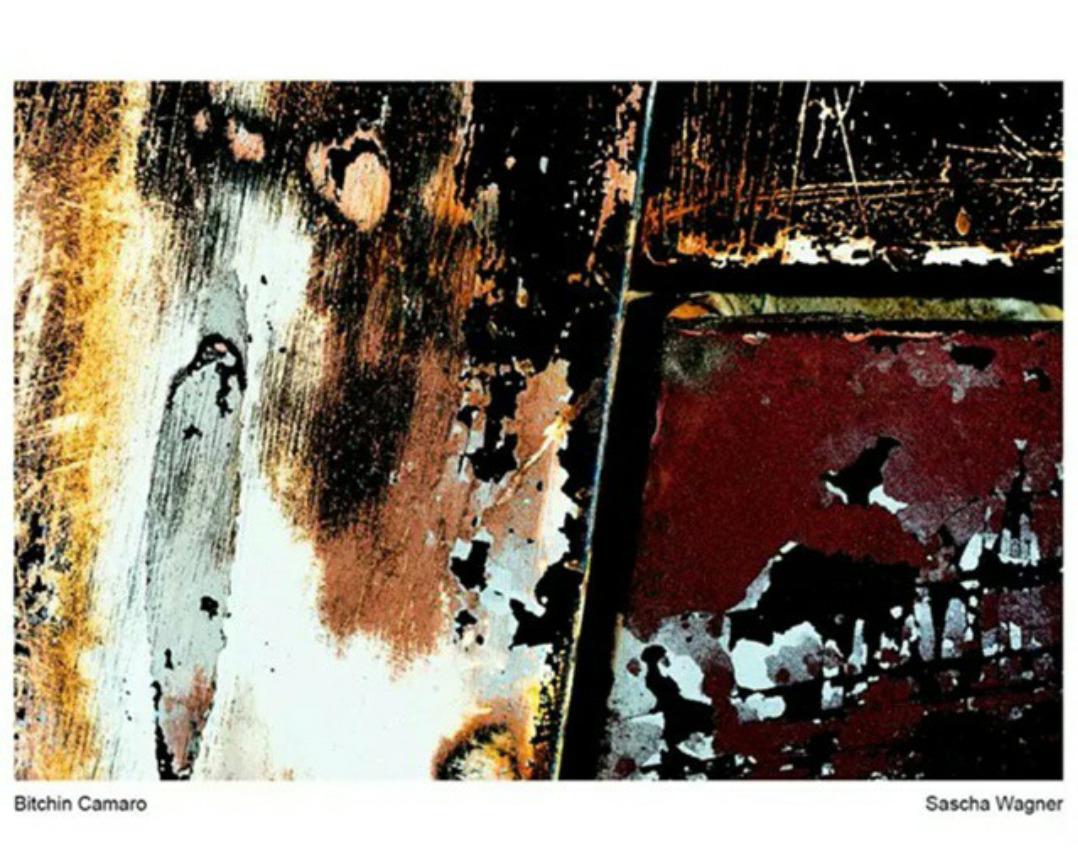 Sascha Squire (Sascha W (@stranezzedalmondo) Cover Image