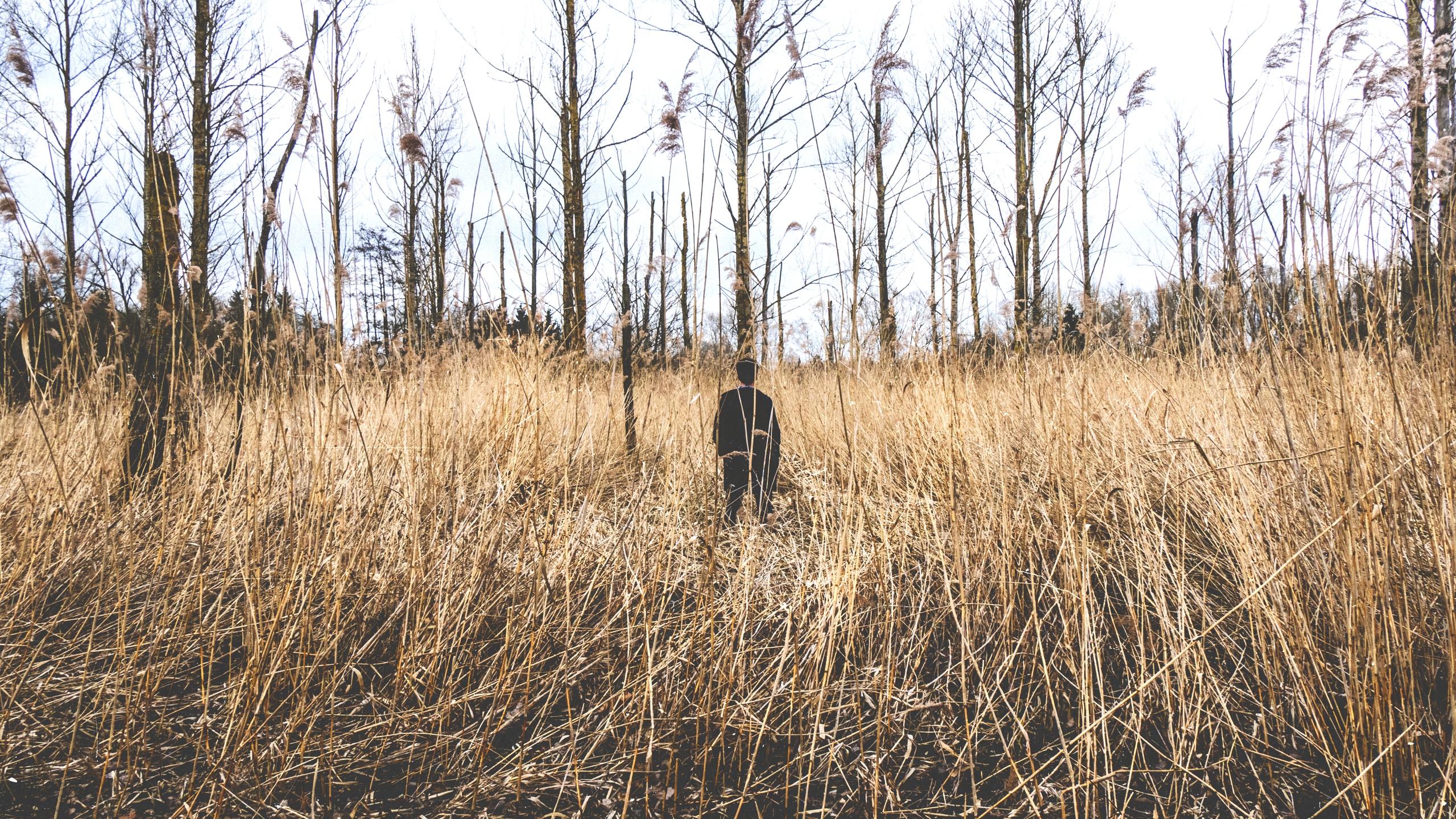 Pieter Claessens (@pieterclaessens) Cover Image