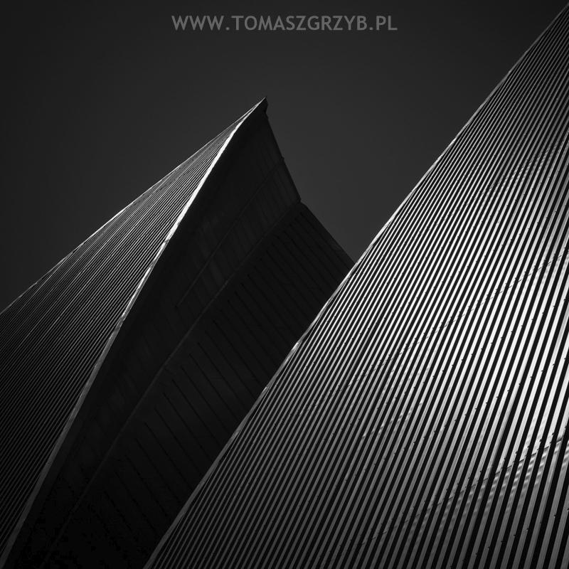 Tomasz (@tomaszgrzyb) Cover Image