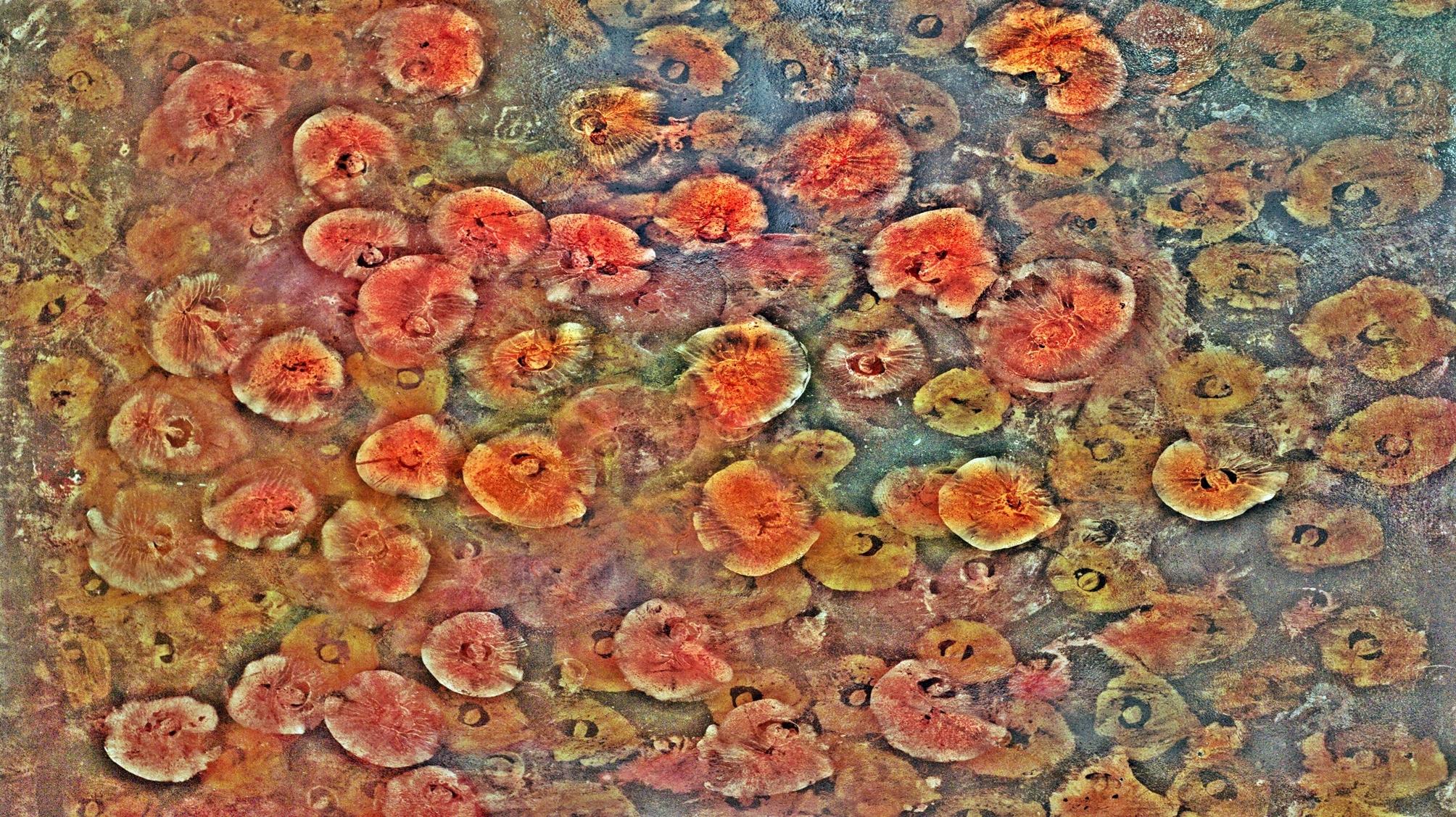 katerina bukolska (@mumcreate73) Cover Image