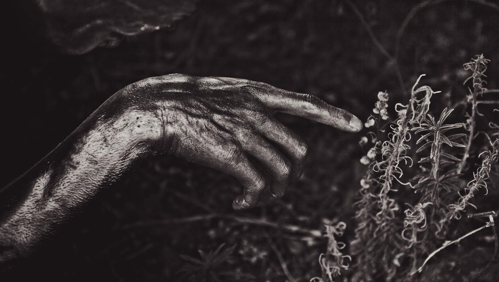 Alex Apt (@alexapt) Cover Image