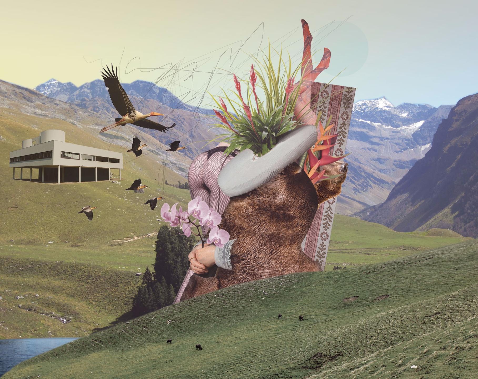 Lucas Faria (@luk-faria) Cover Image