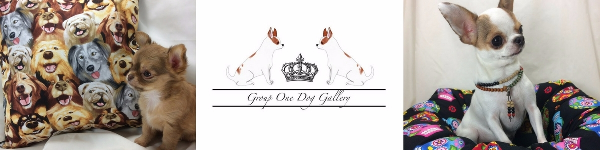 Tanya Stringer (@grouponedoggallery) Cover Image