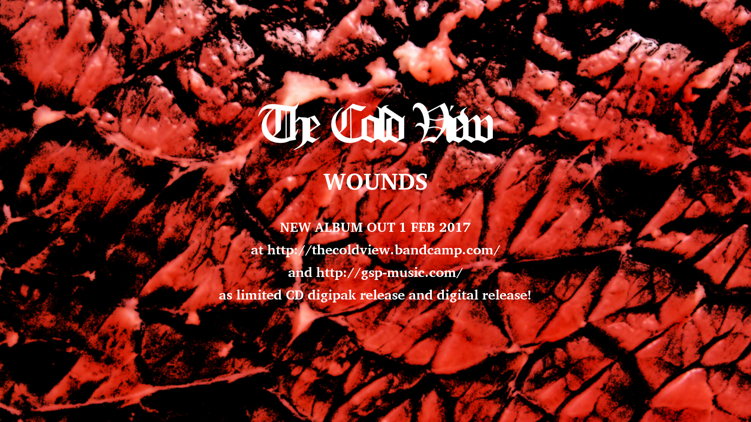 The Cold View (@thecoldview) Cover Image