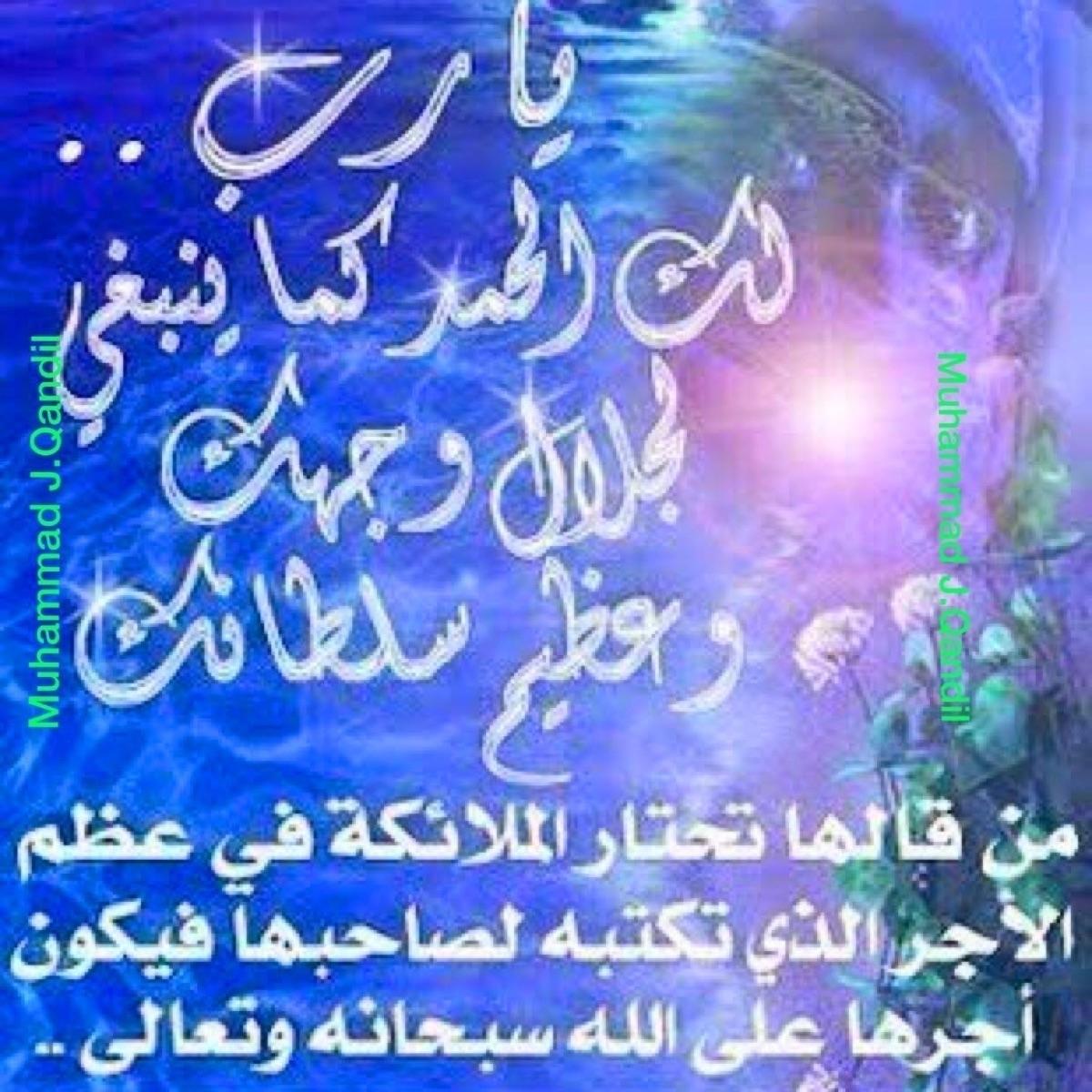 kandeel_70 (@kandeel_70) Cover Image