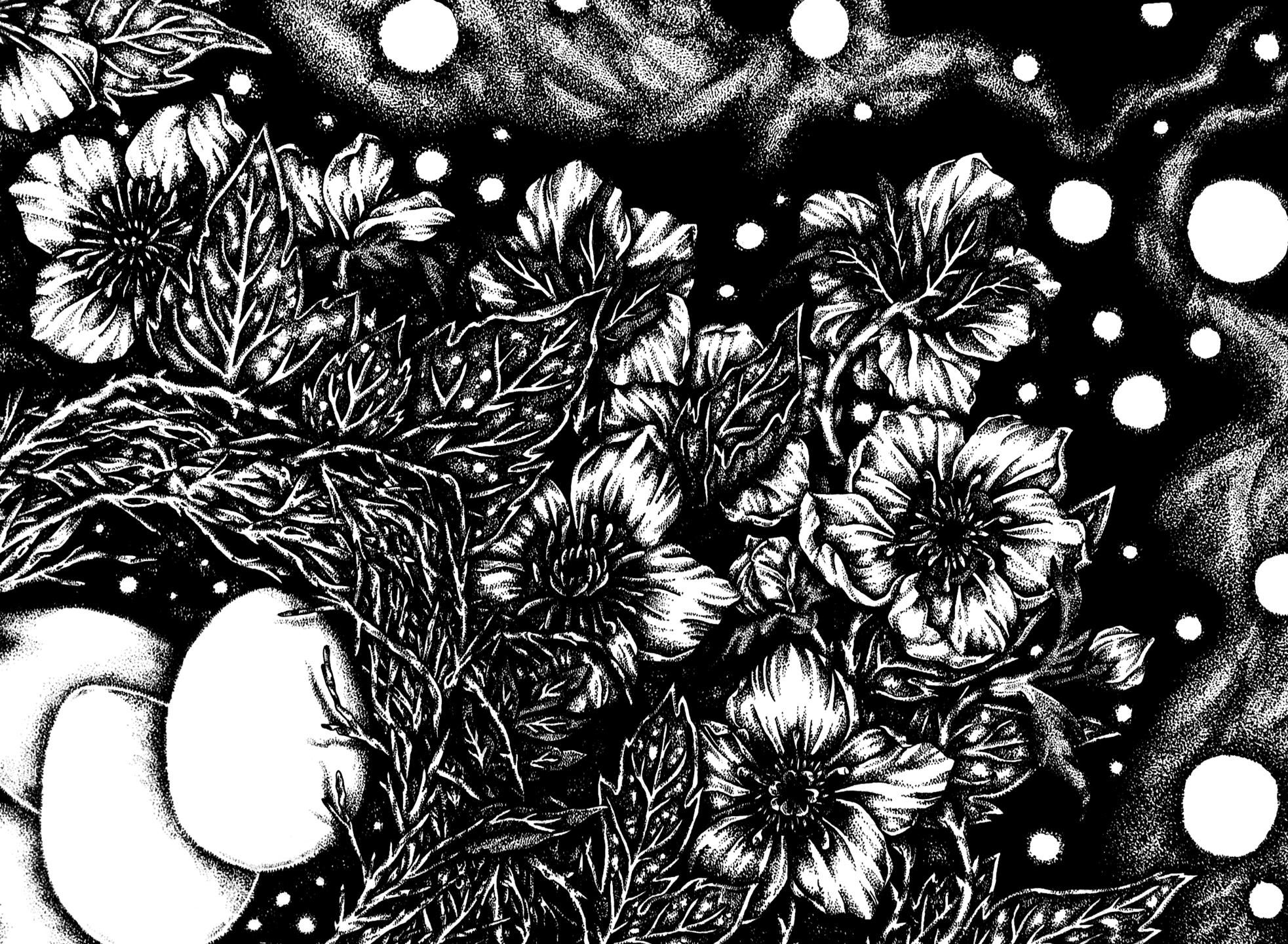 Ash Miyagawa (@ashmiyagawa) Cover Image