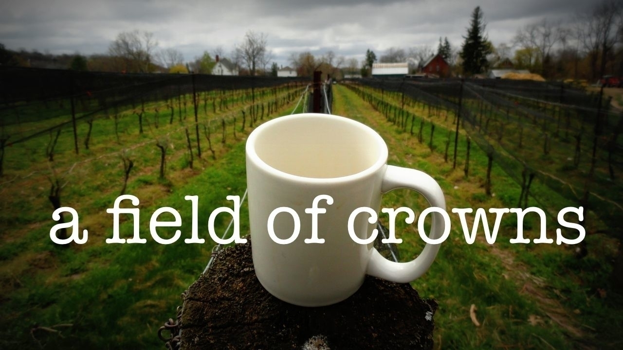 a field of crowns (@afieldofcrowns) Cover Image