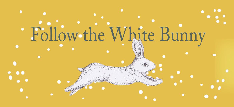 Follow the White Bunny (@followthewhitebunny) Cover Image