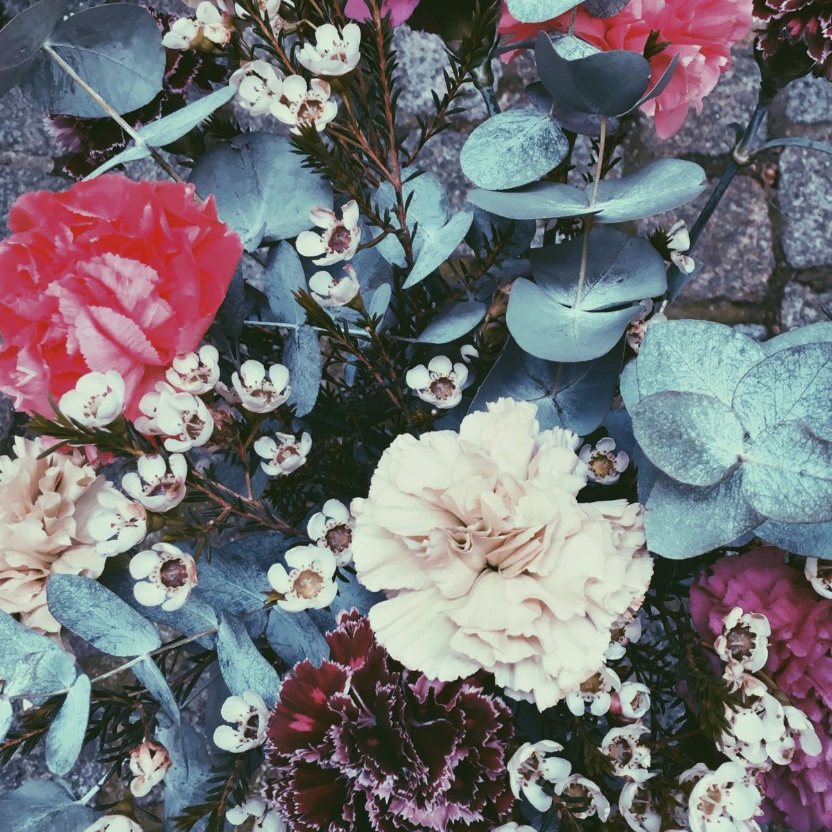 Morgane Mathieu (@trustthemojo) Cover Image
