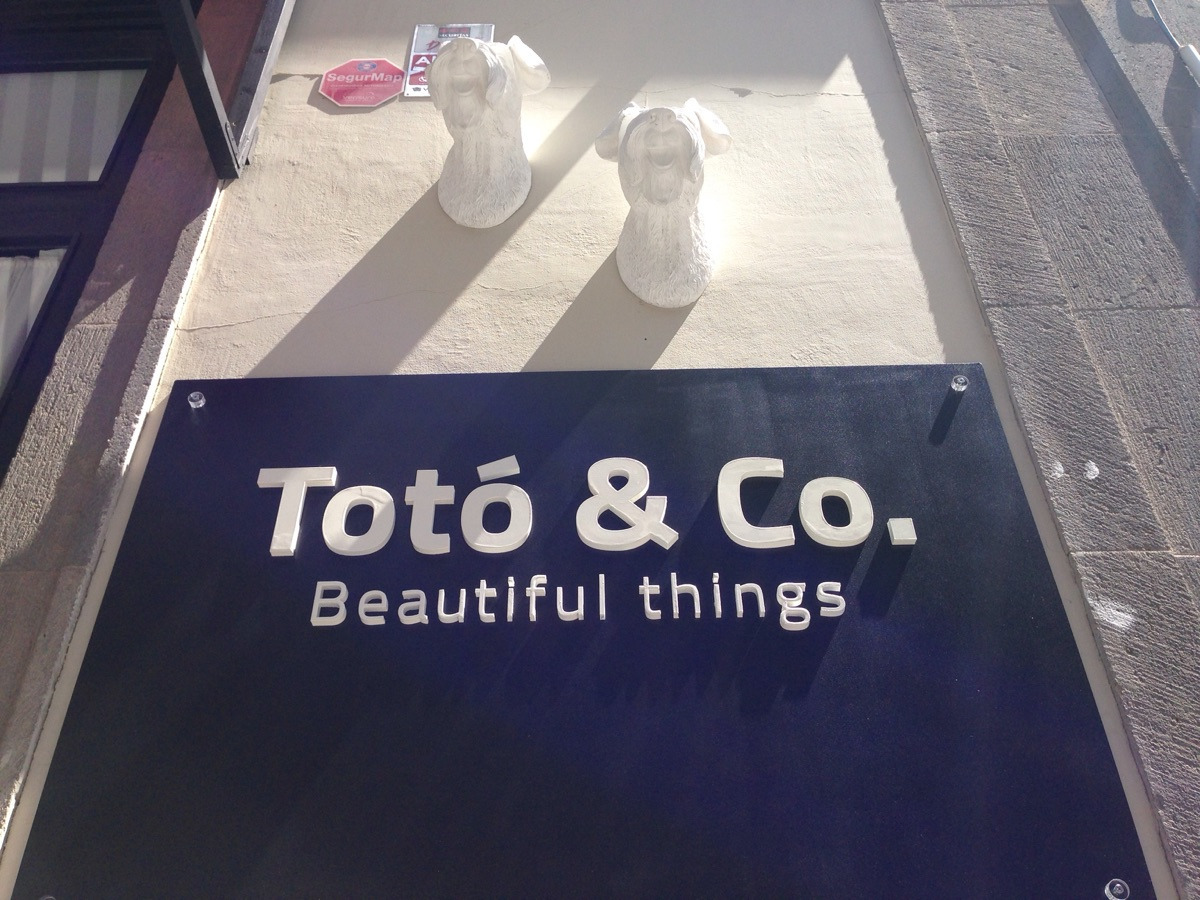 TotoandCo. (@totoandco) Cover Image