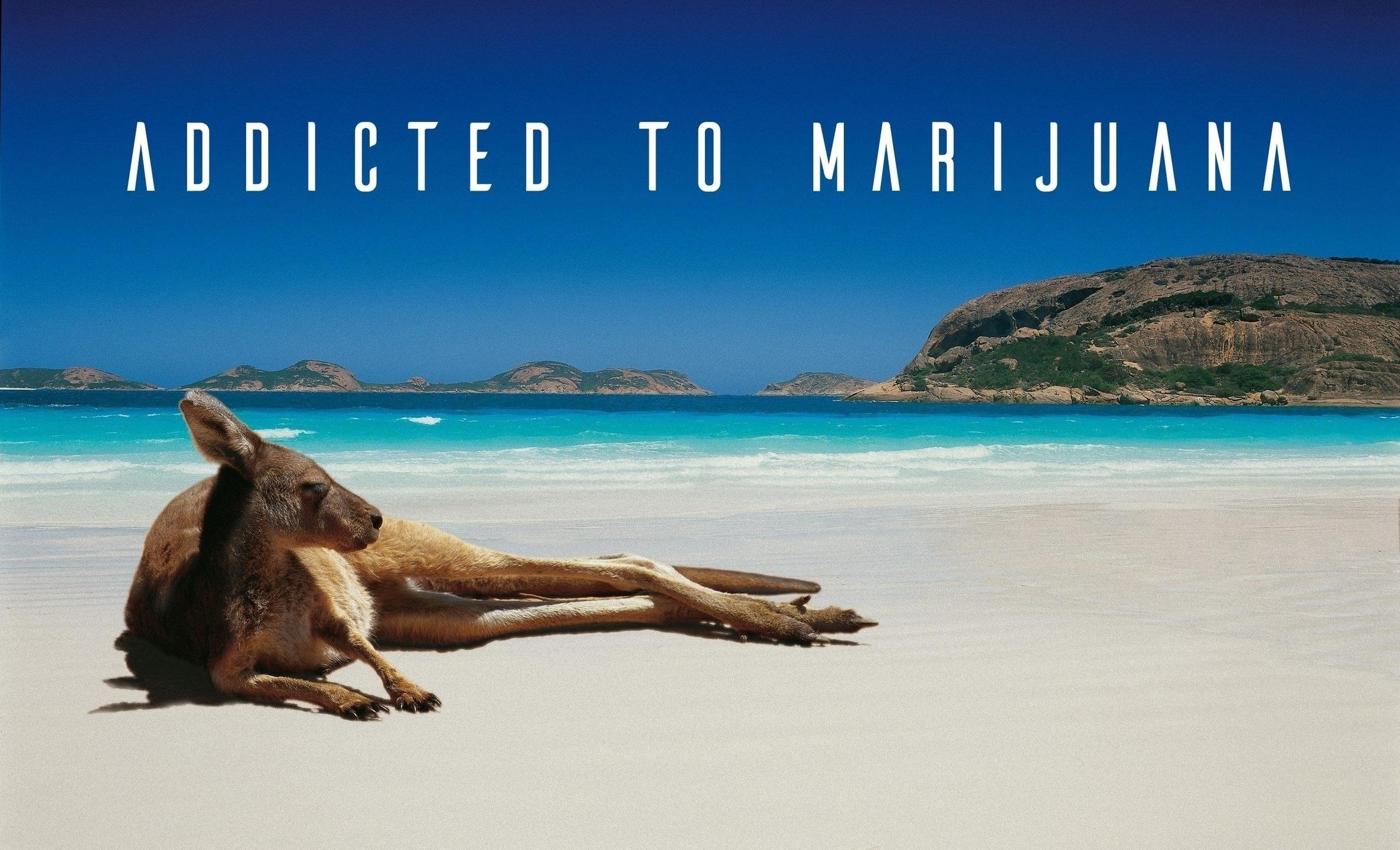 Max Christensen (@skythedog) Cover Image