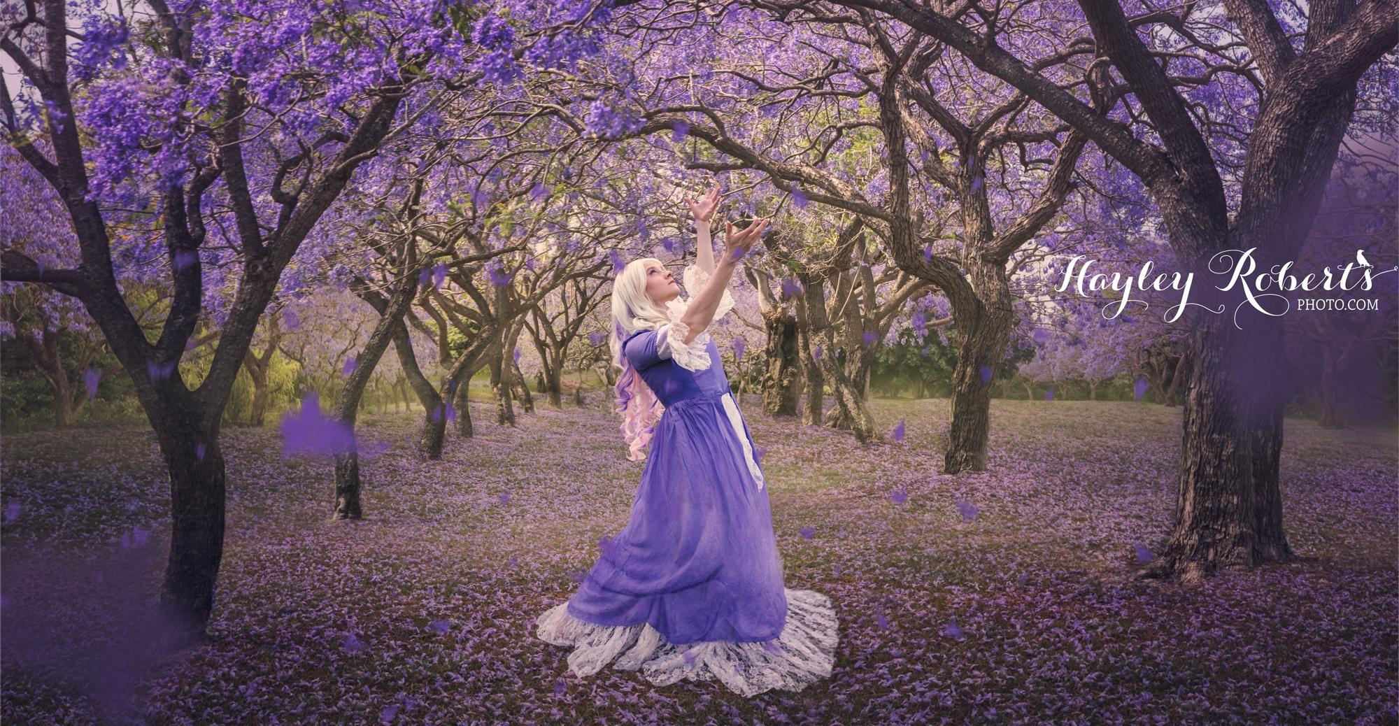 Hayley (@hayleyrphoto) Cover Image