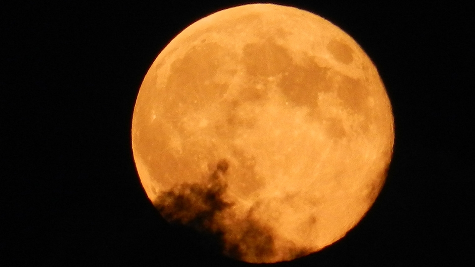 Thats My Moon (@thatsmymoon) Cover Image