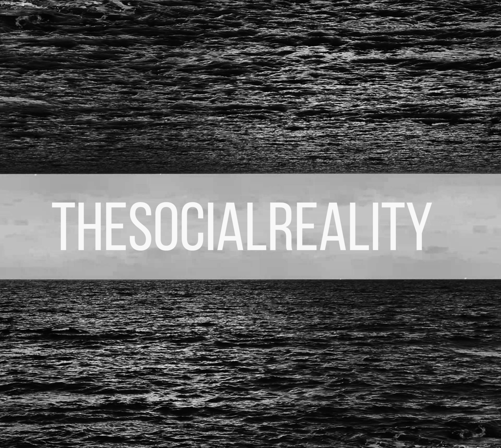 thesocialreality (@thesocialreality) Cover Image