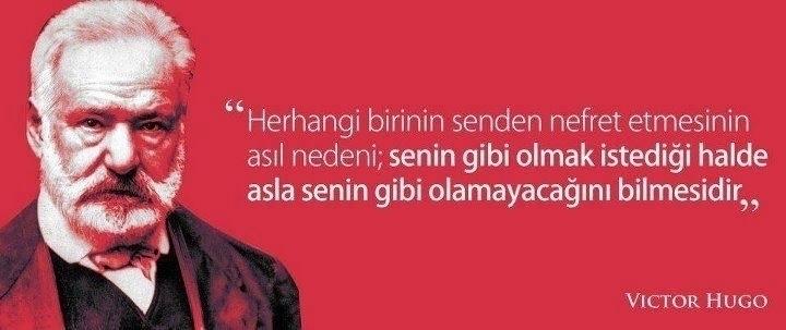 Ceren Deniz (@cerendeniz) Cover Image
