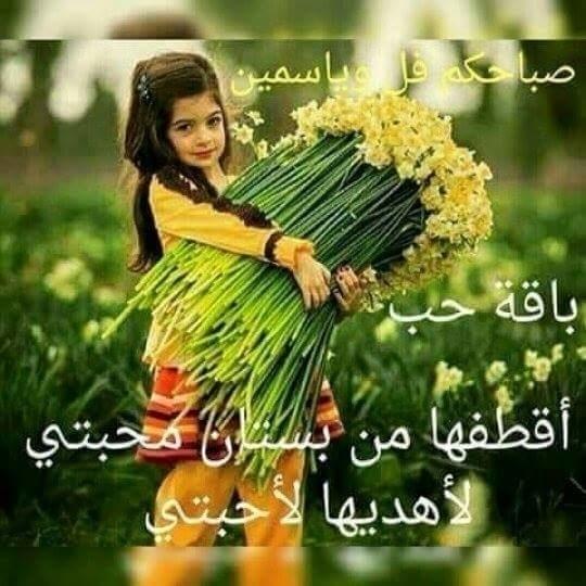 @noonaali2015 Cover Image