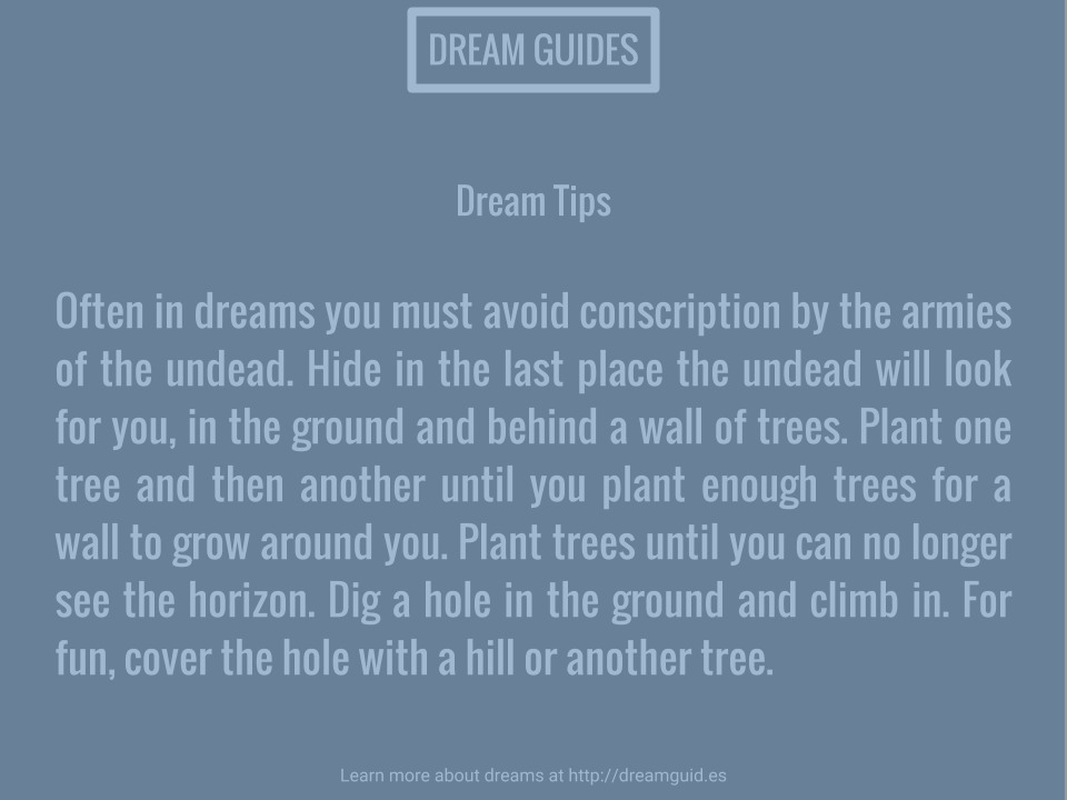 Dream Guides (@dreamguides) Cover Image