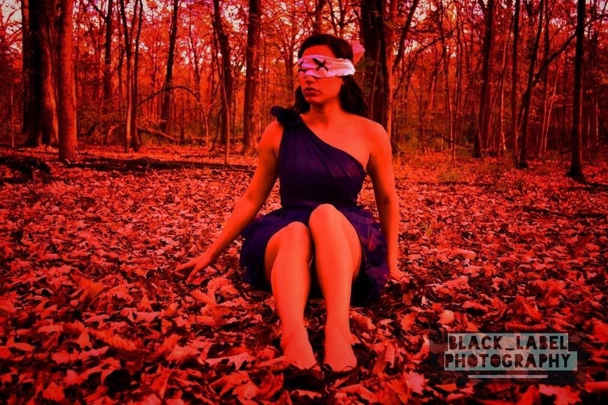 Luis A  (@black_label_lab) Cover Image