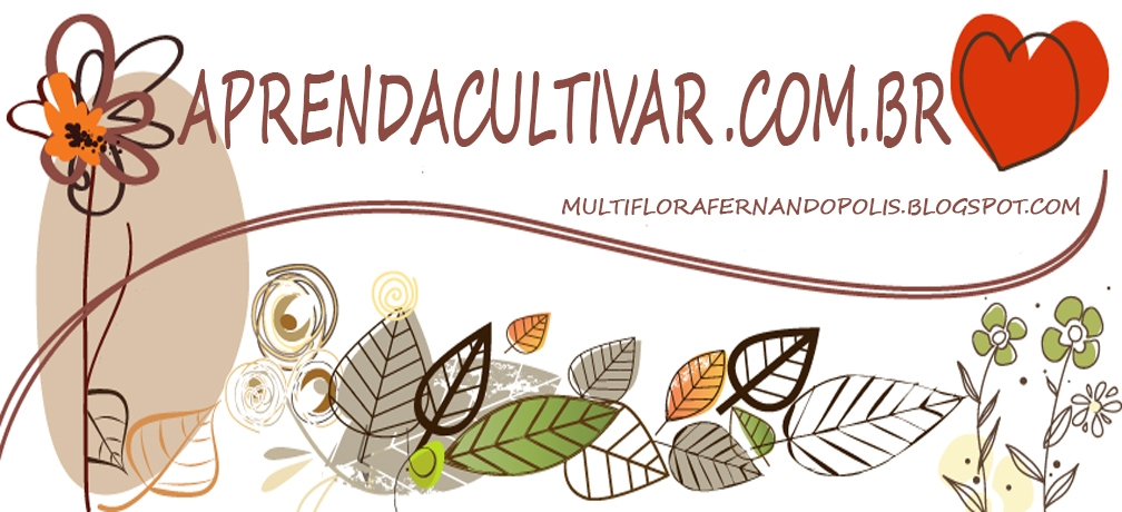 Victinho (@victinhofernandopolis) Cover Image
