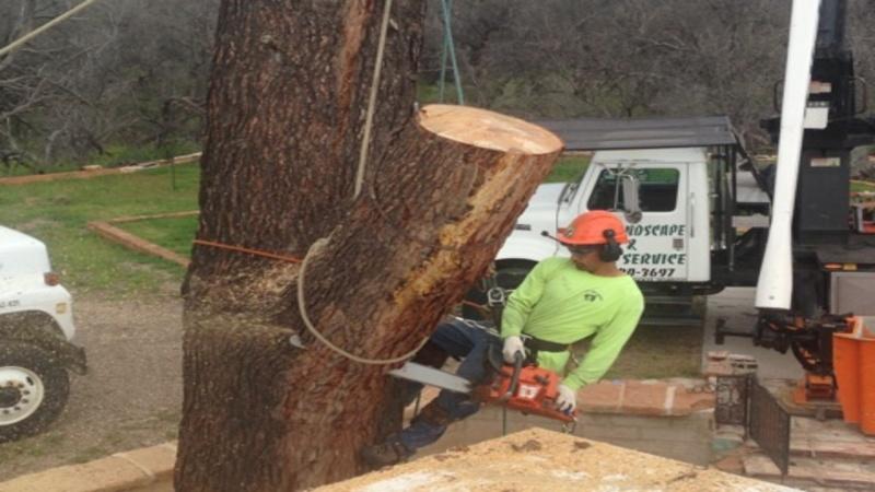 RO Landscape & Tree Service LLC (@rolstreeservice) Cover Image