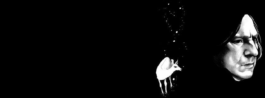 Leonardo Amaral (@hirakoichi) Cover Image