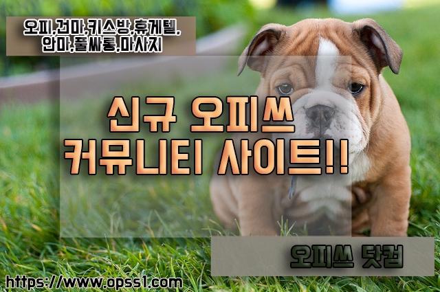 {광진오피}오피쓰 (@gwangjinopss) Cover Image