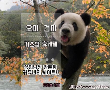 「마포오피」오피쓰 (@mapoopss) Cover Image