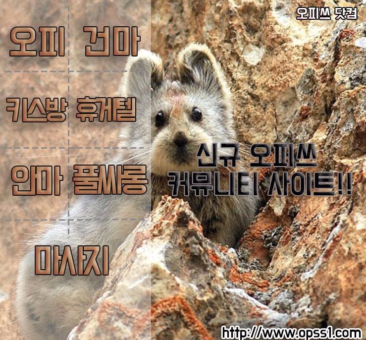 석계오피 오피쓰 (@seokgyeoopss) Cover Image