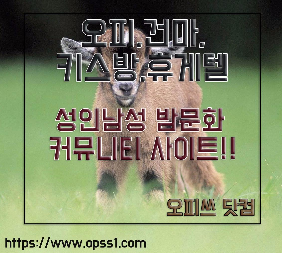천호오피 오피쓰 (@cheonhoopss) Cover Image