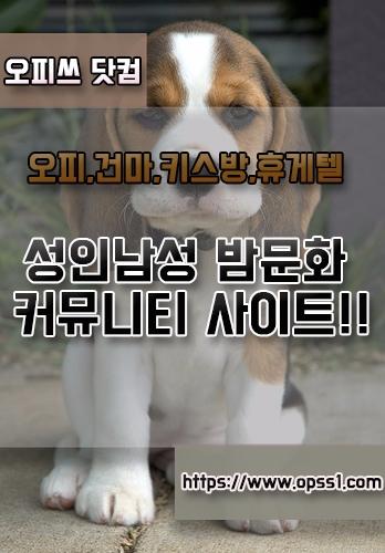 「대전오피」「오피쓰」 (@daejeonopss) Cover Image