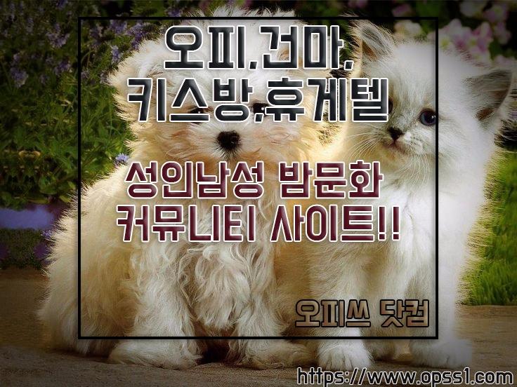 {화성오피}{오피쓰} (@hwaseongopss) Cover Image